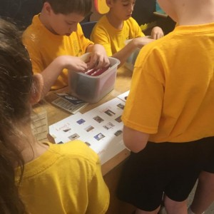 Finding the correct stamp for their